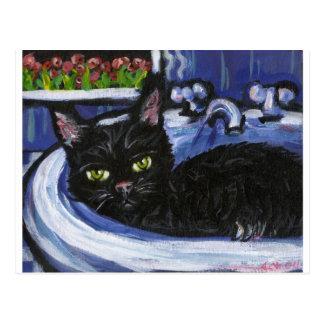 Black cat in sink post card