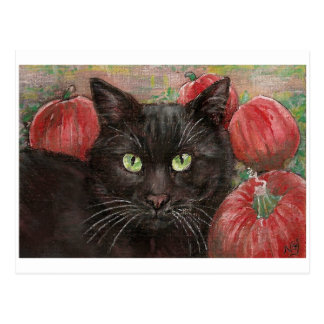 Black Cat in the Pumpkin Patch Postcard