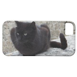 Black Cat iPhone 5 case-mate