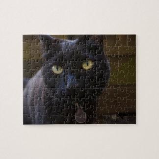Black Cat Jigsaw Puzzle