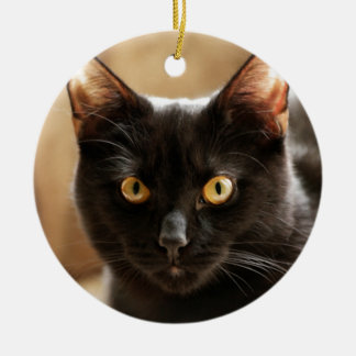 Black cat looking at camera eyes close up christmas ornament