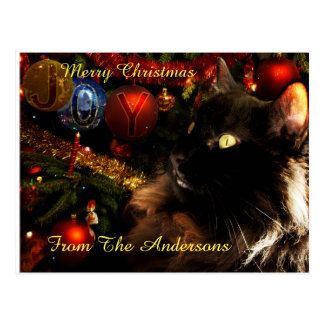 Black Cat Merry Christmas Postcard