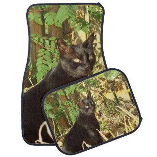 Black Cat Morning Sun Car Mat