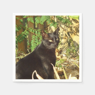 Black Cat Morning Sun Disposable Napkins