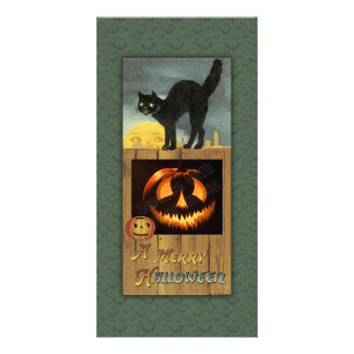 Black cat on a wooden fence with pumpkin customised photo card