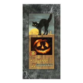 Black cat on a wooden fence with pumpkin picture card