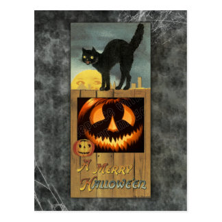 Black cat on a wooden fence with pumpkin postcards