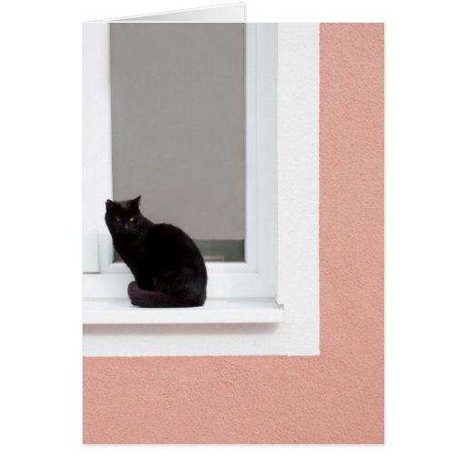 Black Cat on Coral Greeting Card