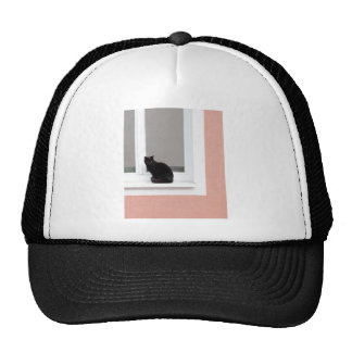 Black Cat on Coral Mesh Hat