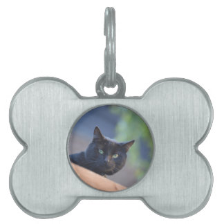 Black cat pet tag