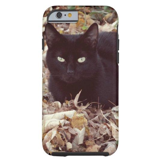 Black Cat Photo  iPhone 6/6s, Tough Tough iPhone 6 Case