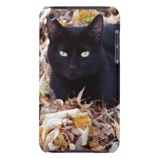 Black Cat Photo iPod Touch, Barely There Case-Mate