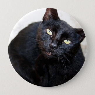 Black Cat Portrait 10 Cm Round Badge