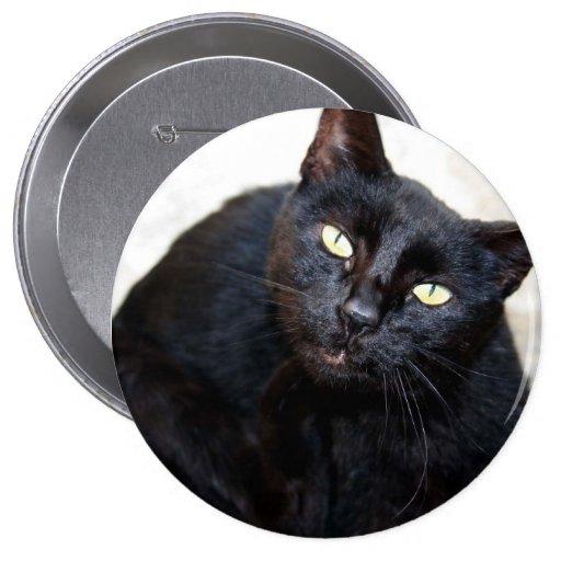 Black Cat Portrait Pinback Buttons