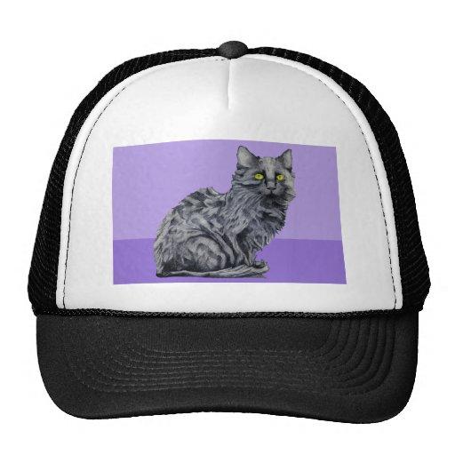 Black Cat purple Hat