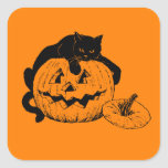 Black Cat Resting On Top of a Carved Pumpkin Square Sticker
