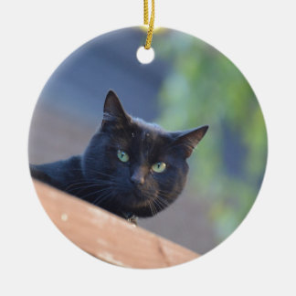 Black cat round ceramic decoration