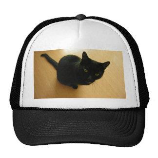Black Cat Sitting on a Hardwood Floor Mesh Hats