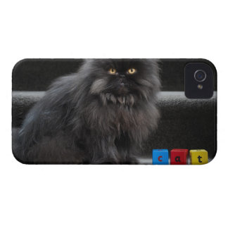 Black cat sitting on stairs by building blocks. iPhone 4 Case-Mate case