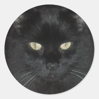 Black Cat Stare Classic Round Sticker