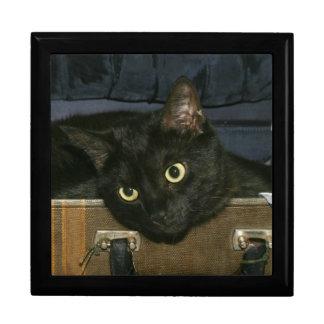 Black cat suitcase keepsake boxes