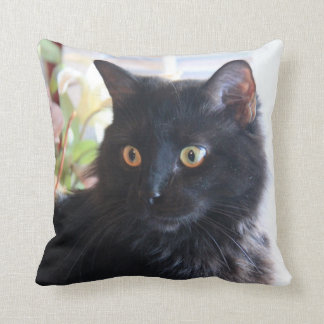 Black Cat, throw pillow