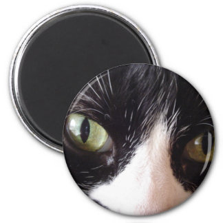 Black Cat, White Whiskers, Green Eyes 6 Cm Round Magnet