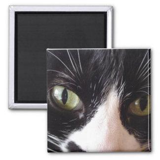 Black Cat, White Whiskers, Green Eyes Square Magnet