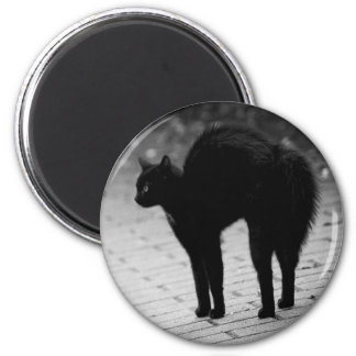 Black Cat with Arched Back Candy Mints Tin Magnet