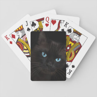 Black cat with blue eyes playing cards