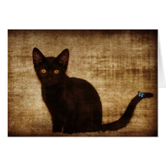 Black Cat With Butterfly Notecard Card