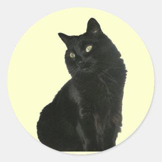 Black Cat with Golden Eyes Sticker