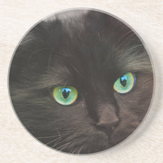 Black cat with green eyes portrait coaster