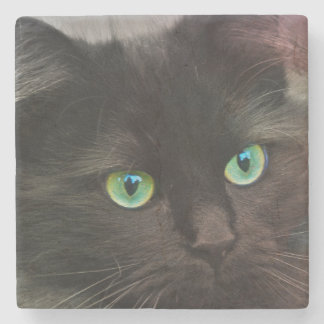 Black cat with green eyes portrait stone coaster