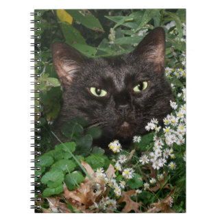 Black cat with wildflowers notebook