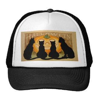 Black Cats and a Jack O'Lantern Cap