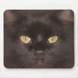 black cats eyes mouse mat