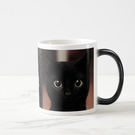 Black Cats Magic Mug