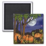 Black Cats & Pumpkins Magnet