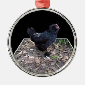 Black Chicken Pop Out,_ Silver-Colored Round Decoration