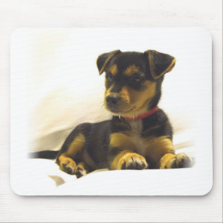 Black Chihuahua Mouse Pad