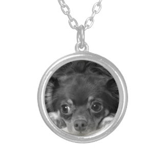 Black chihuahua silver plated necklace