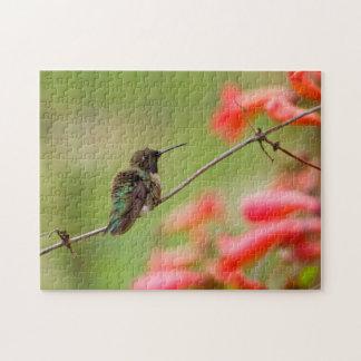 Black-Chinned Hummingbird Jigsaw Puzzle