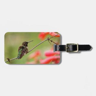 Black-Chinned Hummingbird Luggage Tag