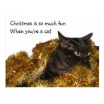 Black Christmas cat Post Card