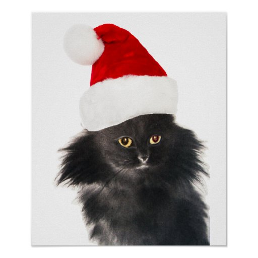 BLACK CHRISTMAS CAT WITH SANTA CLAUS HAT POSTERS