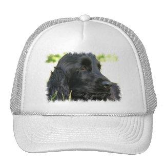 Black Cocker Spaniel Dog Baseball Hat