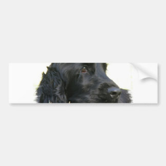 Black Cocker Spaniel Dog Bumper Sticker