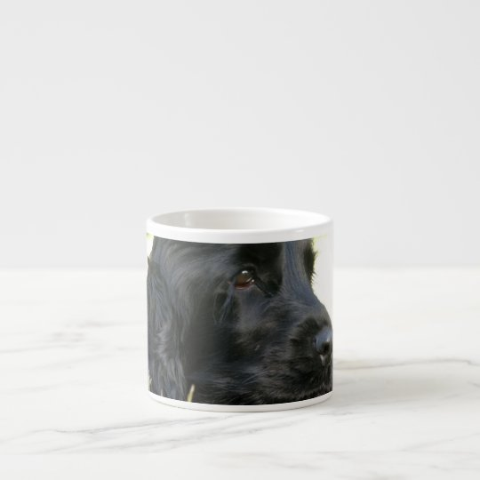 Black Cocker Spaniel Dog Speciality Mug