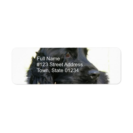 Black Cocker Spaniel Return Address Label
